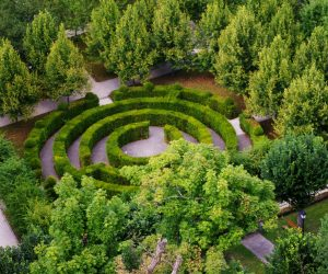 http://www.publicdomainpictures.net/pictures/80000/velka/green-labyrinth.jpg